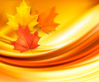 Autumn background with leaves Royalty Free Stock Image