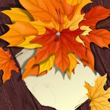 Autumn Background With Leaves. royalty-vrije illustratie