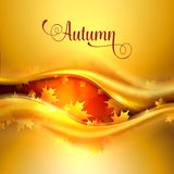 Autumn background with leaves Royalty Free Stock Photo