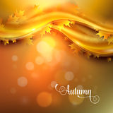 Autumn background with leaves Stock Images