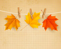 Autumn background with leaves. Back to school. Royalty Free Stock Photos