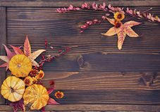 Autumn Background of Leaves, Berries, Flowers and Pumpkins Royalty Free Stock Photos