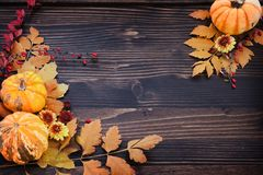 Autumn Background of Leaves, Berries, Flowers and Pumpkins stock photo