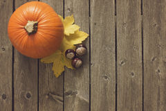 Autumn background with leaves and big pumpkin Stock Images