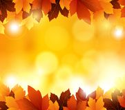 Autumn background with leaves and blank space for you design Stock Photography