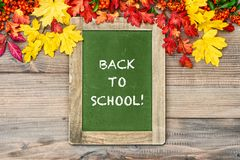 Autumn background leaves chalkboard back to school. Autumn background yellow red leaves and chalkboard. Back to school Royalty Free Stock Photos