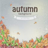 Autumn background with leaves, chestnuts and acorns. Royalty Free Stock Photo