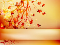 Autumn background with leaves. EPS 10 Royalty Free Stock Photos