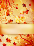 Autumn background with leaves. EPS 10 Royalty Free Stock Images