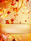 Autumn background with leaves. EPS 10 Royalty Free Stock Photo