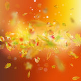 Autumn background with leaves. EPS 10 vector Royalty Free Stock Photo