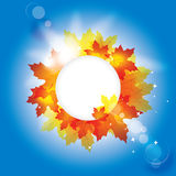 Autumn background with leaves  / eps10 Stock Image