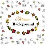 Autumn  background. Autumn leaves  background hand drawn on white Royalty Free Stock Image
