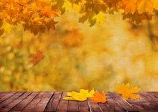 An autumn background Royalty Free Stock Photos