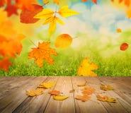 An autumn background Royalty Free Stock Photo