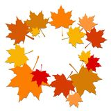 Autumn background leaves Royalty Free Stock Image