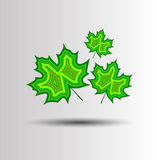 Autumn background with leaves. Maple leaf vector illustration Stock Photo