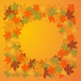 Autumn background of leaves  maple. Vector illustration Royalty Free Stock Photo