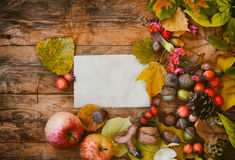 Autumn background, leaves, mushrooms, berries, nuts Royalty Free Stock Photos