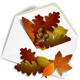 Autumn background. Autumn leaves in a paper envelope. Retro background with autumn leaf. Season backdrop. Autumn template. Vector illustration. Place for your Stock Illustration
