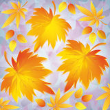 Autumn background with leaves - place for text Stock Photos