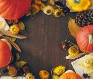 Autumn background with leaves and pumpkins. Frame of fall harvest on aged wood with copy space. Mockup for seasonal offers royalty free stock photos