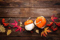 Autumn background with leaves and pumpkins, thanksgiving and halloween card Royalty Free Stock Photos
