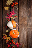 Autumn background with leaves and pumpkins, thanksgiving and halloween card Stock Images