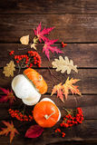 Autumn background with leaves and pumpkins, thanksgiving and halloween card Stock Image