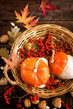 Autumn background with leaves and pumpkins, thanksgiving and halloween card Royalty Free Stock Image