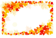 Autumn background with leaves. Royalty Free Stock Photos