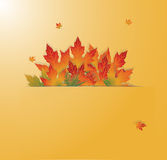 Autumn background with leaves. Vector illustration card Stock Photo