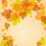 Autumn Background. With Leaves. Vector Illustration. Eps 10 Stock Photo