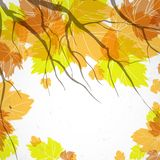 Autumn Background. Autumn Background With Leaves. Vector Illustration. Eps 10 Stock Photo