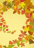 Autumn Background. Autumn Background With Leaves. Vector Illustration. Eps 10 Royalty Free Stock Photo