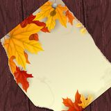 Autumn Background With Leaves. Vector Illustration. Eps 10 Royalty Free Stock Photo