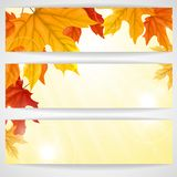 Autumn Background With Leaves. Vector Illustration. Eps 10 stock illustration