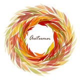 Autumn background of leaves Royalty Free Stock Images
