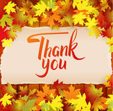 Autumn background with lettering Thank You Royalty Free Stock Images