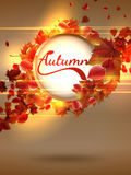 Autumn background with lights. plus EPS10 Stock Photo