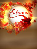 Autumn background with lights. plus EPS10 Royalty Free Stock Image