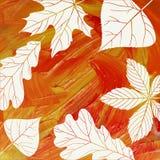 Autumn Background mágico Imágenes de archivo libres de regalías