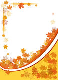 Autumn background, maple leafs Stock Image