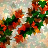 Autumn background of maple leaves. Colofrul image vector illustration