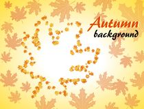 Autumn background with maple leaves. In the form of a maple leaf Stock Images