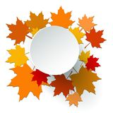 Autumn background leaves Royalty Free Stock Images