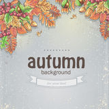 Autumn background with maple leaves, oak, chestnut, rowan berries and acorns. Image of autumn background with maple leaves, oak, chestnut, rowan berries and vector illustration