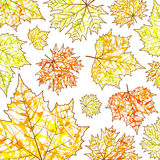 Autumn background, maple leaves  and paint splashes, drops, blots. For design Royalty Free Stock Photos