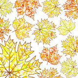 Autumn background, maple leaves  and paint splashes, drops, blots. For design Royalty Free Stock Images
