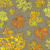 Autumn background, maple leaves and paint splashes, drops, blots. For design stock illustration